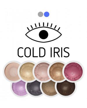 Cold Iris mini Eye Shadow Set