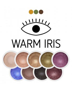 Warm Iris mini Eye Shadow Set